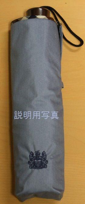 日傘B.jpg